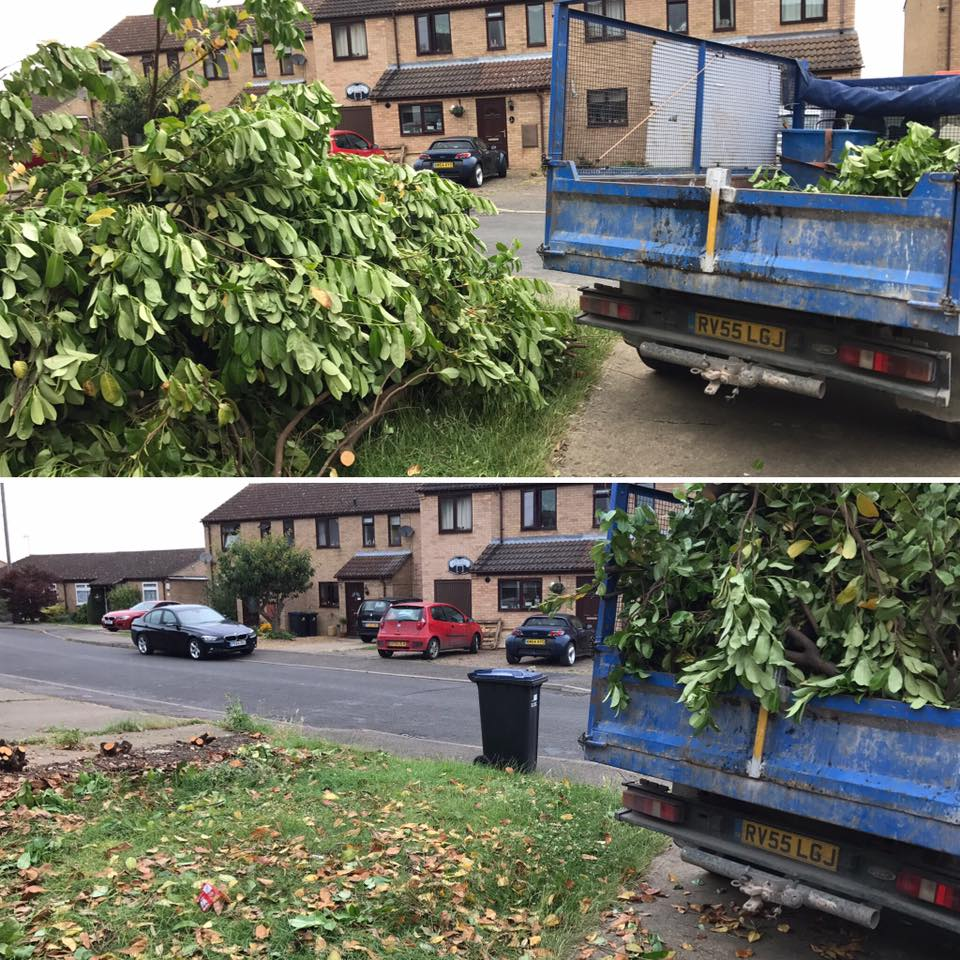 green waste clearance
